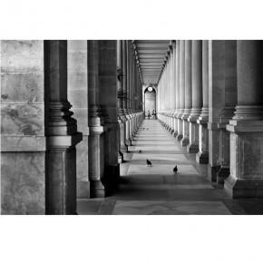 Fototapeta Kolumny - czarno biała nr F213119