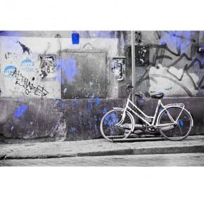 Fototapeta Rower plamisty nr F213164