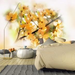Fototapeta kwiaty słonecznej jabłoni nr F213382