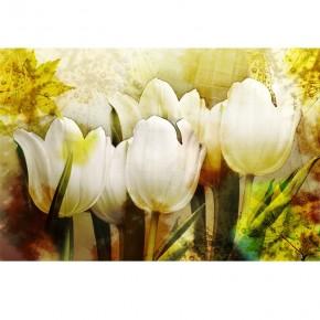 Fototapeta tulipany aranżacje nr F213400