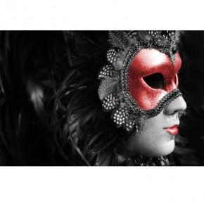 Fototapeta Karmazynowa maska nr F213309