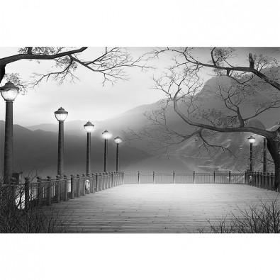 Fototapeta pomost czarno biała nr F213841