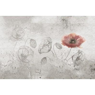Fototapeta maki - kwiaty Vintage nr F214108