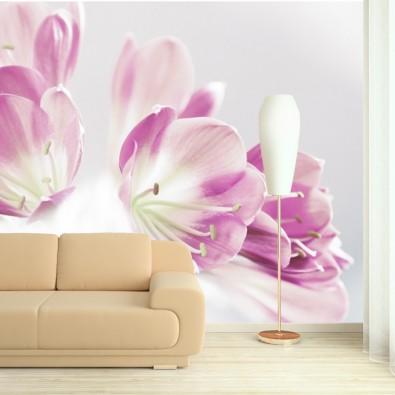 Fototapeta fioletowa orchidea do salonu nr F213017