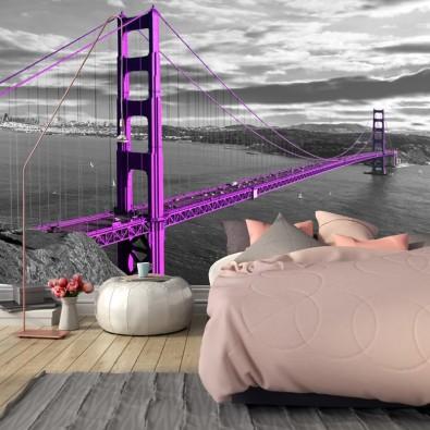 Fototapeta Most Golden Gate nr F213080